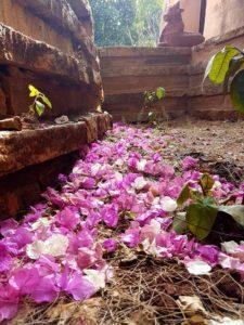 Harmonisation chemin fleur