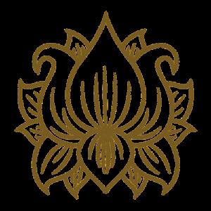 illustration fleur