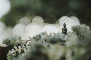 Bouddha Zen Harmonisation des lieux