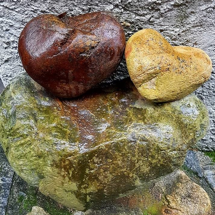 Harmonisation des lieux Coeur nature
